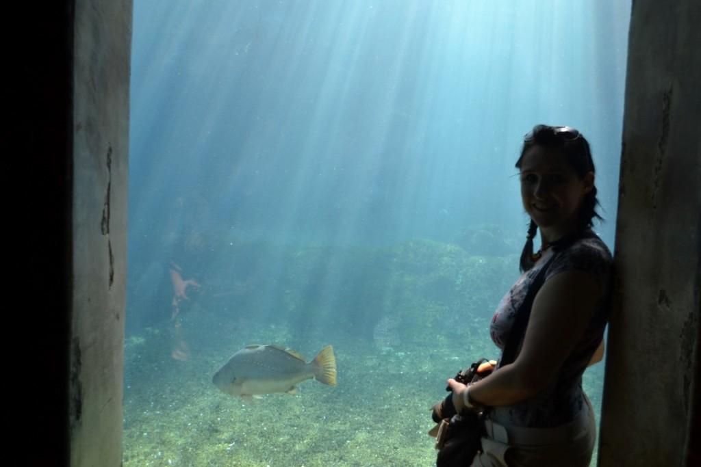 Ushaka Marine World Durban