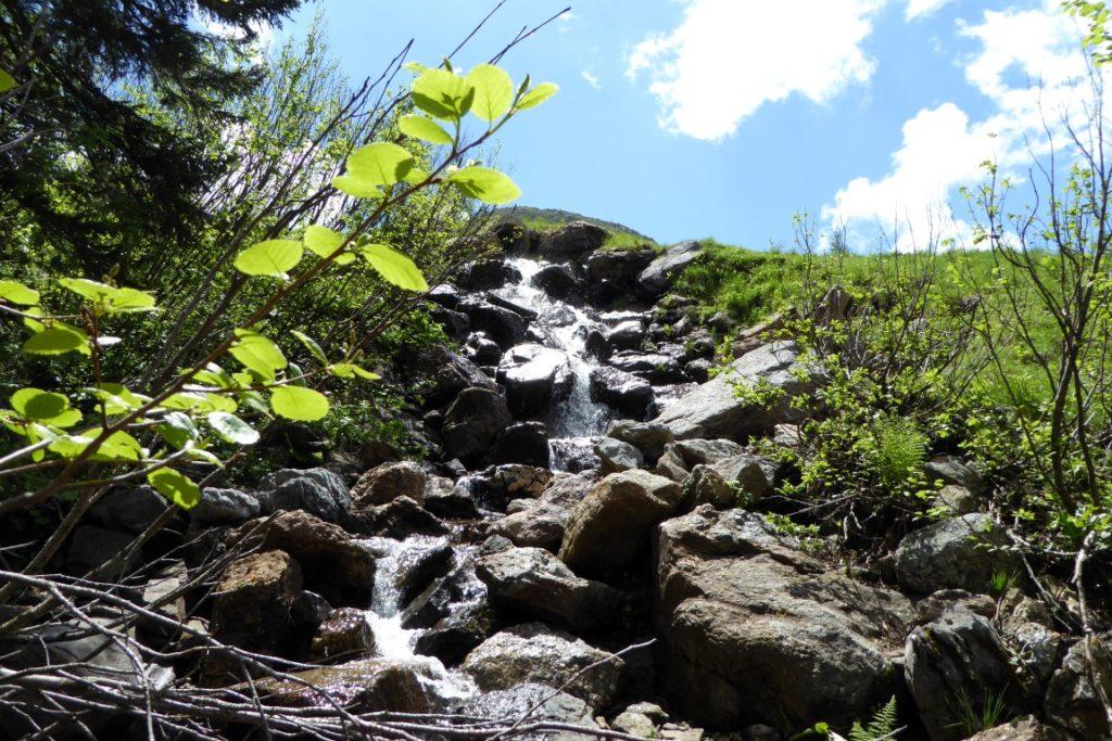 wasser-natur-idylle