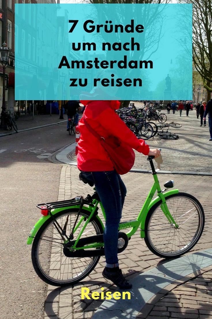 warum du nach Amsterdam musst