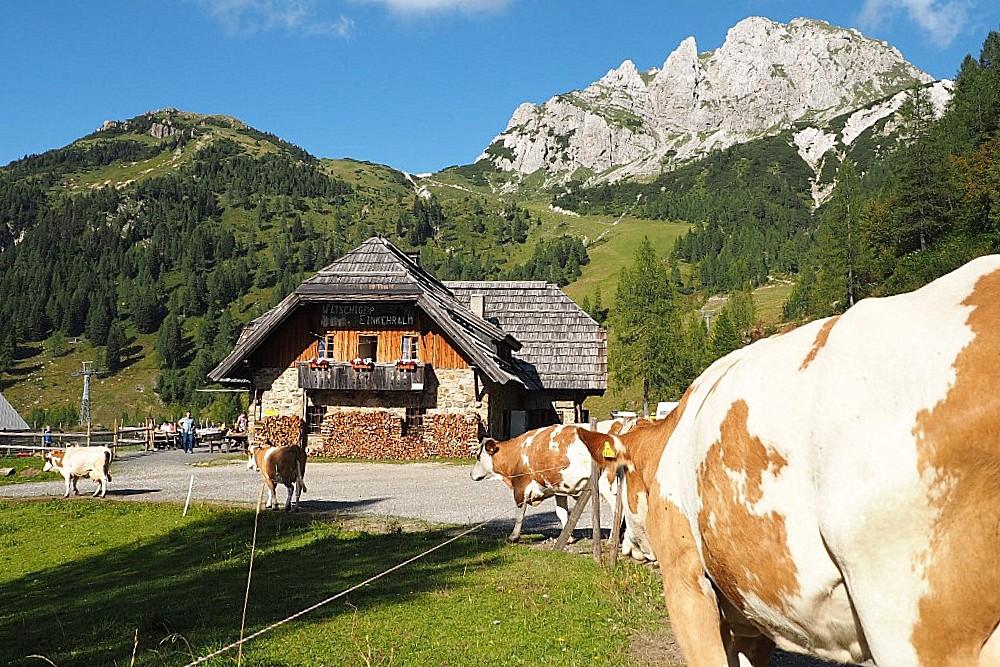 gartnerkofel-watschiger-alm