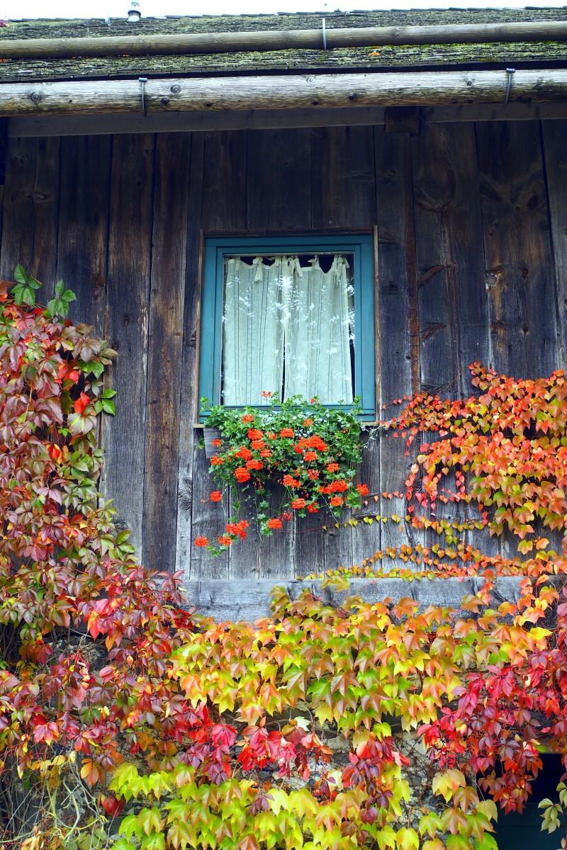 Herbst-Farben-Döbernitzen
