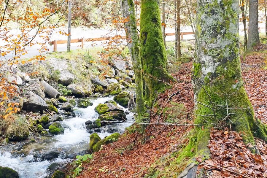 Zugang-Weissenfelser-Seen