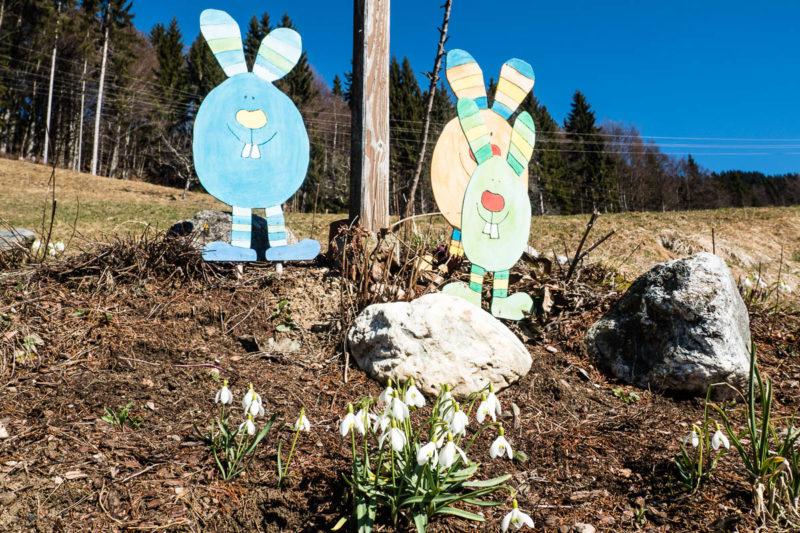 Frühling in Kreuth