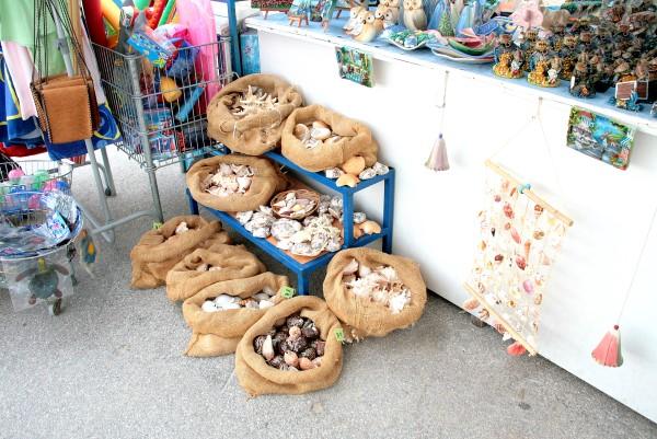 Muscheln und Souvenirs von Istrien