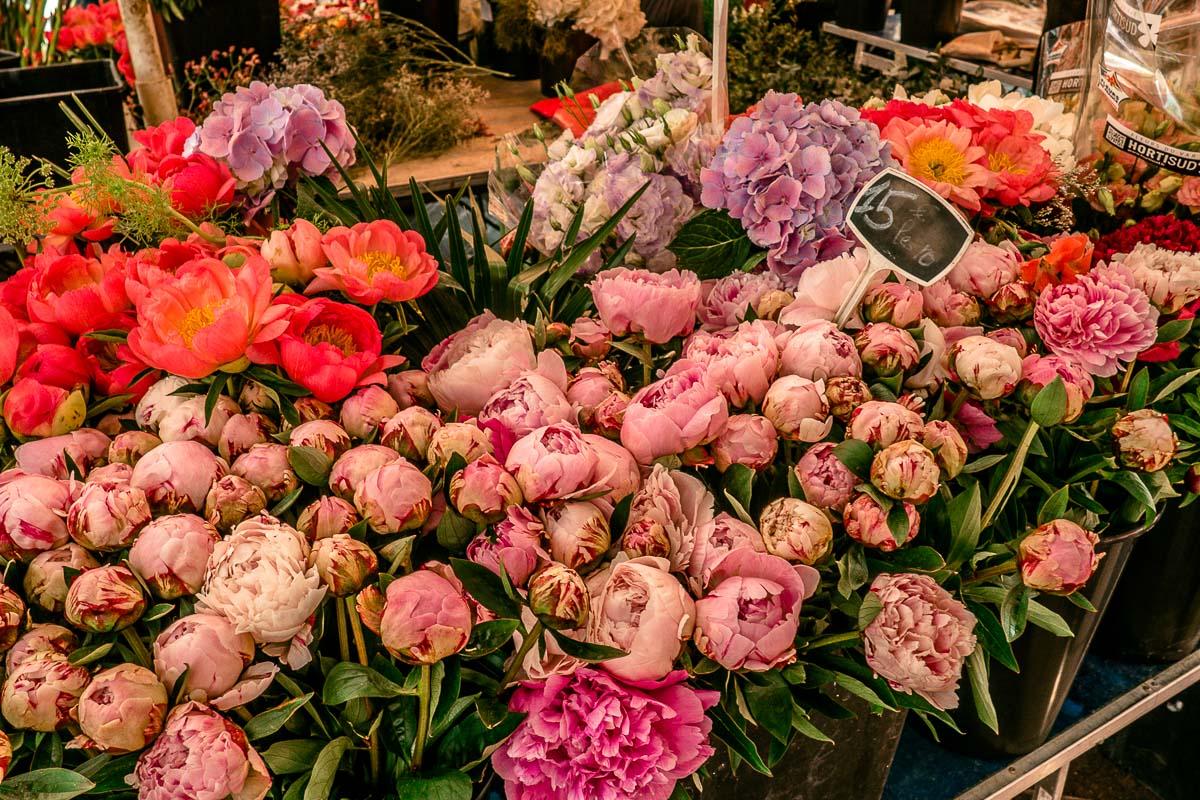 Blumenmarkt-Nizza