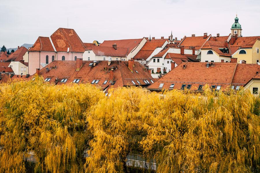 Maribor Slowenien Ausflug