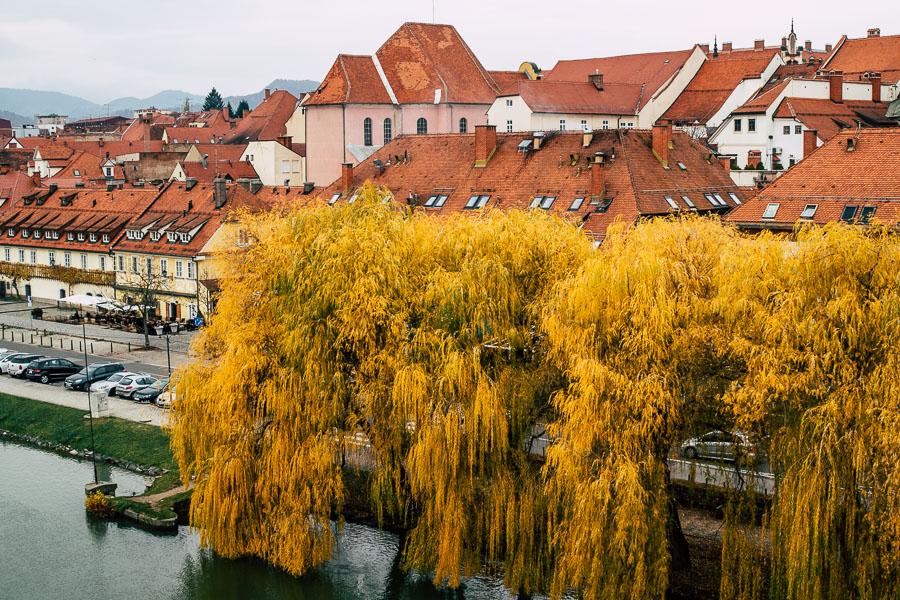 Altstadt Lent Maribor