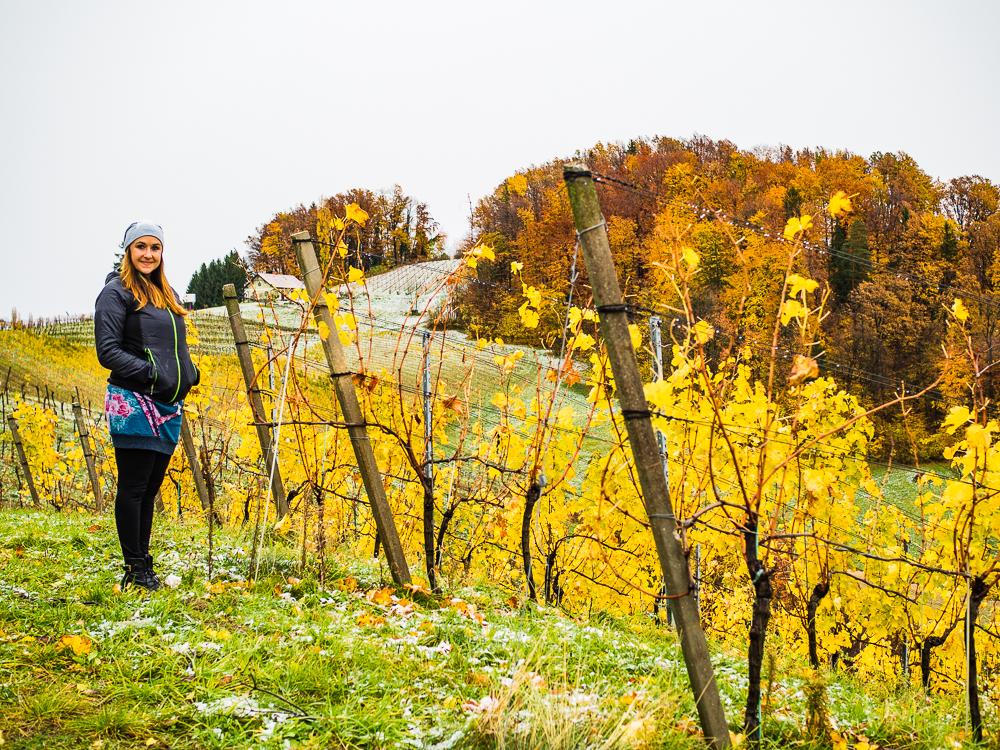 Urlaub Gamlitz Steiermark