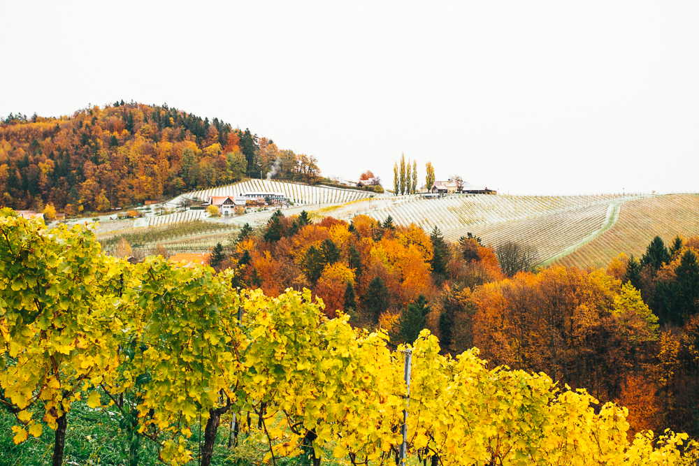 Südsteirische Weinstraße Kurzurlaub Herbst