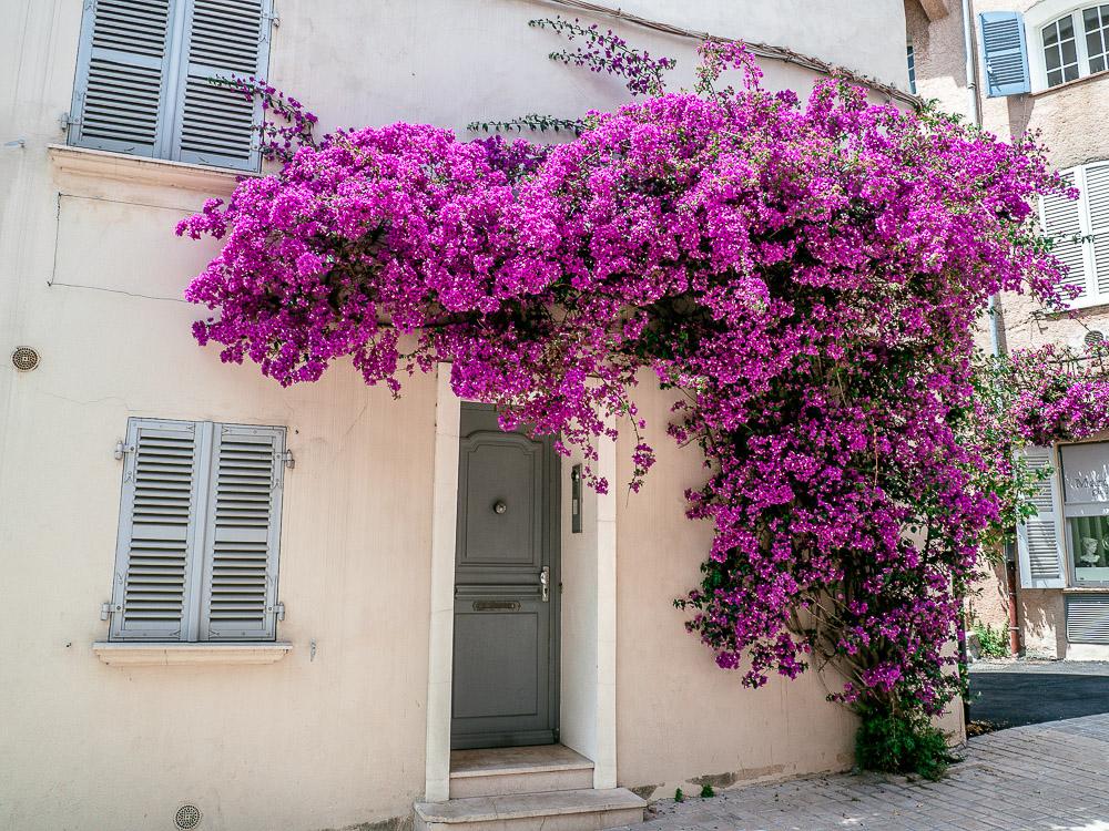 Reise-Sommer-St-Tropez