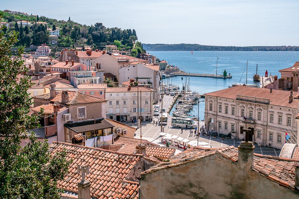 Hafen Piran und Tartiniplatz