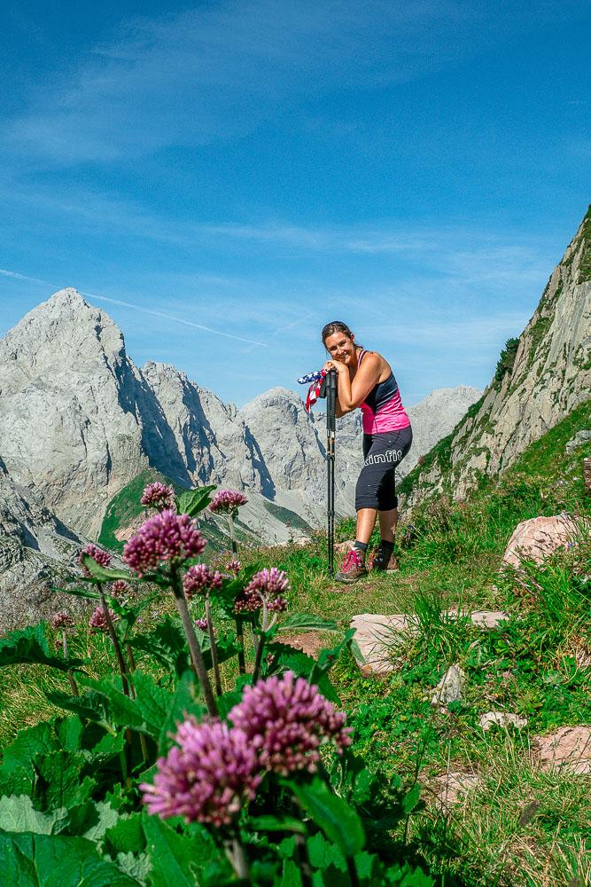 blumen-wandern-karnische-alpen