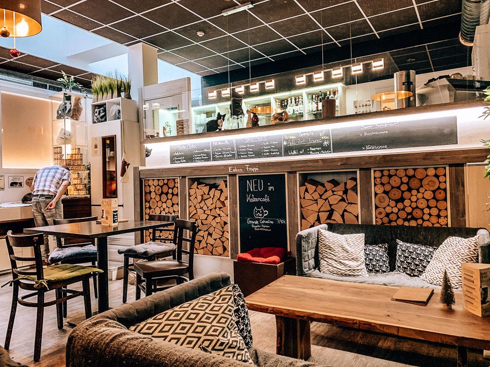 katzencafe-klagenfurt