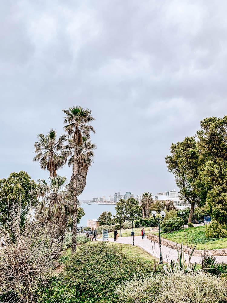 tel-aviv-metropole-am-mittelmeer