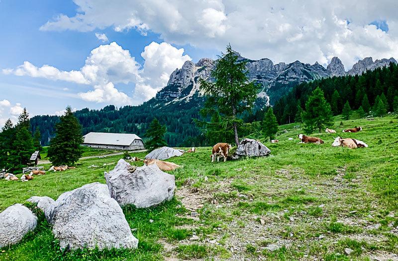 rattendorfer-alm-karnische-alpen